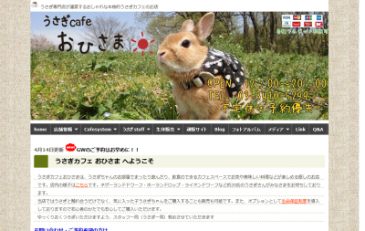 うさぎカフェ おひさま ホーム
