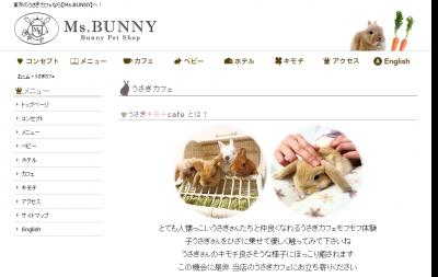 東京のうさぎカフェ・うさぎ販売はMs.BUNNY
